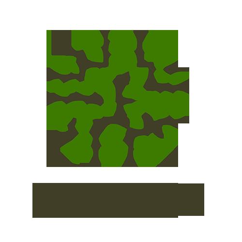 Товары из Индии и Кореи
